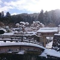 雪がようやく小降りになりました
