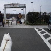 久しぶりに浜松サービスエリアに行ってみたら………