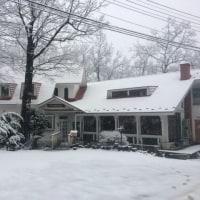 雪が積もり始めました