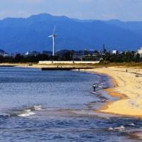 ある日の海 その3