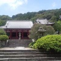 6月  あじさい寺へいかが~ (奈良 矢田寺)