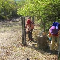 3 高陽山の会20周年記念桜へ給水  植樹に給水を
