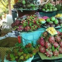 ベトナムの果物のはなし