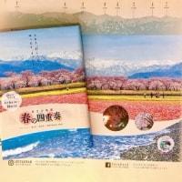 北京にブックカバーで春の絶景を届けます!