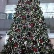 クリスマスシーズンですね