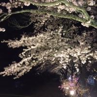 「日本一美しい星空」100億の天体観測へ
