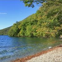 英国大使の湖畔リゾートライフ@英国大使館別荘記念公園・4 ~癒しの湖畔