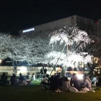 錦糸公園☆桜2017