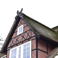 藁葺き屋根の薬局