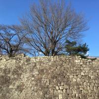 小峰城、ふたたび