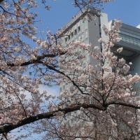 スポコミ・カワラ版 4月18日(火)赤口