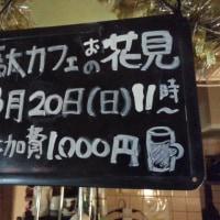 健全なお花見のお知らせ2016