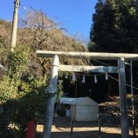 月讀神社へ初詣