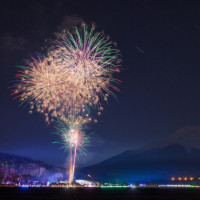 花の都公園 冬花火 2017