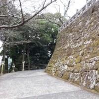 アサタケオ(10)