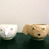 動物面植木鉢