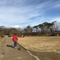 今年最後の千秋公園…かな?