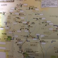 菩提峠、日本武尊の足跡、三ノ塔、塔ノ岳 そして🦌