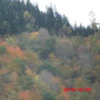 富山から名古屋へ
