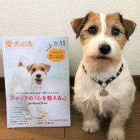 愛犬の友/iPhone7Plus