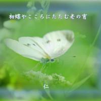 『 初蝶やこころにたたむ老の宵 』物真似575春qx1702