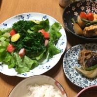 珍しい野菜  &  楽しい一日