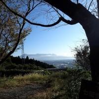 岩本山から愛鷹山連山を望む!