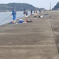 やっと、浜田に釣りに行けたが・・・肝心の釣果は