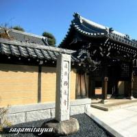 からすやま寺町の寺院「白鳥山西蓮寺」