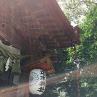 アジフライとネコと神社