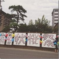 第40回秋桜祭♪