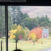 2012年4月クイーンズタウンからミルフォードサウンド バス旅