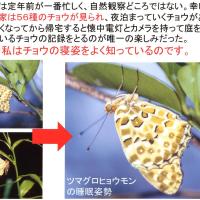 1.チョウやガの翅に残る鳥の嘴によってできた傷から何がわかるか?その4