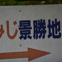 長野県箕輪町もみじ湖・・・箕輪ダムも周りに10,000本余のもみじが植えられている・・・まだ早かった