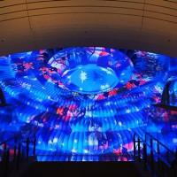 河津桜とMOA美術館