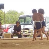 平成29年度倉吉幼稚園すもう大会