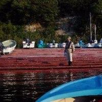 37年間愛用の竿 DAIWA KEVLAR Carbo VIKING でカレイ釣り