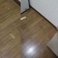 床の隠し扉