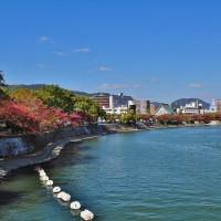 過去の写真~紅葉(桜紅葉 広島市)