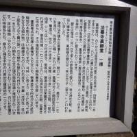 あずまや山(ダッシュ隊)