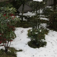 (4K)2008年・雪の京都壁紙その3(計9枚)