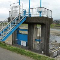 一番橋より左岸下流、樋管の様子
