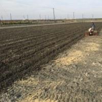 モミガラを入れた田んぼの耕耘