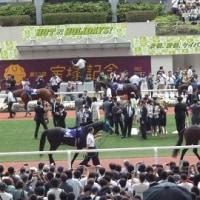 阪神競馬 第58回宝塚記念