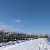雪解けが進まない散歩道