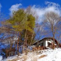 午後の森の庭を散歩して雪遊びをする。
