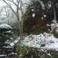 冬の入り口2
