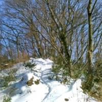 冬の晴れ間の低山ハイク