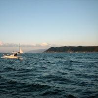 和歌山、加太の船釣り