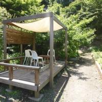 鎌倉中央公園散歩と家のカブトムシ